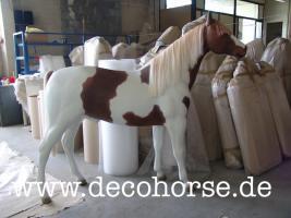 Foto 5 Sie möchten eine Deko Kuh oder doch ein Deko Pferd oder vielicht eine ganz unverbindliche Beratung vor dem Kauf ?