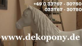 Sie möchten Ihre Kinder Überraschen ja dann holen Sie sich das Deko Pony lebensgross ...