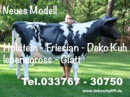 Sie ist da unsere neuen Holstein Deko Kuh lebensgross in zwei Kopfhaltungen