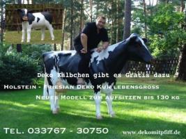 Foto 2 Sie ist da unsere neuen Holstein Deko Kuh lebensgross in zwei Kopfhaltungen