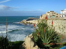 Foto 8 Sizilien Ferienwohnung Terrasini zu vermieten