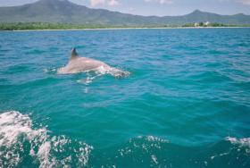 Foto 3 Sondertarif nach Mauritius