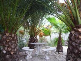 Foto 8 Spanien, Costa Blanca: wunderschöne Villa mit spanischem Ambiente!