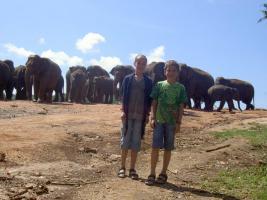 Sri Lanka Traumhafte Familienreisen