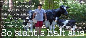 Stell Dir mal vor du hättest ne Deko Holstein - Friesian Deko Kuh im Garten stehen ….
