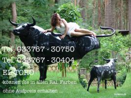 #Stier für Ihre Gattin #Bulle für Ihren Gatten  # Horse Pferd für Ihre Tochter … www.dekomitpfiff.de