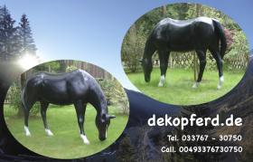 Foto 6 #Stier für Ihre Gattin #Bulle für Ihren Gatten  # Horse Pferd für Ihre Tochter … www.dekomitpfiff.de