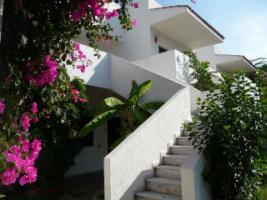 Foto 6 Studio Apartment Insel Kos Mastichari Strandurlaub
