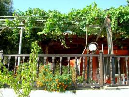 Foto 23 Studio Chalkidiki - Haus des Fischers - Juli - Griechenland