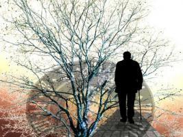 Suchen Sie einen persönlichen Nachfolger und Erben?