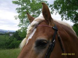 Foto 3 *~Swarovskiperlen Stirnbänder~*