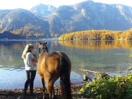 Foto 26 TOP 4 SterneTraumferienwohnung Salzkammergut a. Hallstätter See in Oberösterreich/Landhaus Bergidyll * * * * 4831 Obertraun