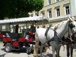 Foto 21 TRAUMFERIENWOHNUNG  LANDHAUS  BERGIDYLL * * * A-Obertraun a. Hallstätter See/Oberösterreich