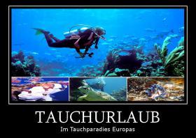 Tauchurlaub in der Top Tauchregion des Mittelmeers in Cabo de Palos