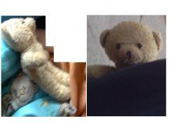 Teddybären, ca. 30cm Groß im Heide-Park Soltau Am Samstag, den 19.06. verloren