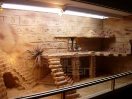 Terrarium Musterterrarium 150cmx60cmx60cm