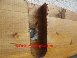 Foto 6 Terrassendachbausatz aus Leimholz, Profiqualität, selber aufbauen