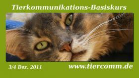Tierkommunikation Seminar Oldenburg  3/4  Dez.11 -3/4 März 12