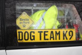 Foto 3 Tips Hunde Erziehung von Dog Team NRW -K9