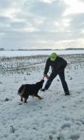 Foto 16 Tips Hunde Erziehung von Dog Team NRW -K9