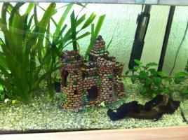 Foto 5 Tolles 200 L Eheim Aquarium zu verkaufen!!!!