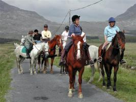 Foto 11 Trailreiten in Irland - Connemara