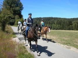 Foto 12 Trekking- Wanderreit- Reitferien in Todtmoos