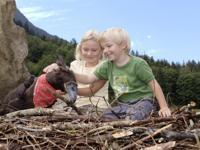 Kinderprogramme Kinderhort mit Betreuung Kinder sind bei uns im Ferien