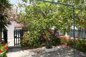 Foto 3 Unser Angebot auf der Insel Rhodos/Griechenland