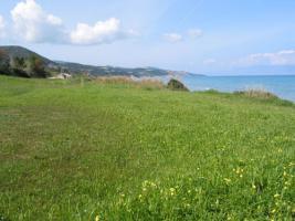 Foto 4 Unser Angebot auf der Insel Zakynthos/Griechenland