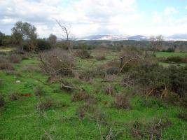 Foto 2 Unser Angebot nahe der Stadt Gythion/Griechenland
