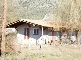 Foto 3 Unser Angebot nahe der Stadt Igoumenitsa/Epirus/Griechenland