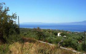 Foto 2 Unser Angebot nahe der Stadt Kalamata/Peloponnes/Griechenland