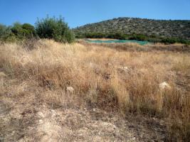 Foto 5 Unser Angebot nahe der Stadt Nafplion/Peloponnes/Griechenland