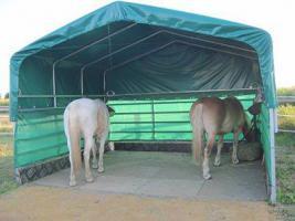 Foto 3 Unterstand, Überdachung, Wetterschutz- WeideZelt