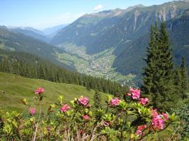 Foto 9 Urlaub in den Bergen