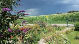 Foto 7 Urlaub in Deutschland! Ferienwohnung , Nierrhein