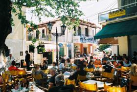 Foto 4 Urlaub in Griechenland gegen Hilfe im Garten!