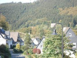 Foto 7 Urlaub mit Hund im Sauerland - nahe Winterberg