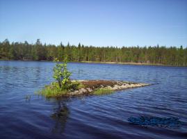 Foto 4 Urlaub mit Hund in Süd- Schweden, Ferienhaus mit Boot und Sauna