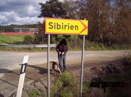 Foto 11 Urlaub mit Hund in Süd- Schweden, Ferienhaus mit Boot und Sauna