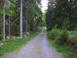 Foto 13 Urlaub mit Hund in Süd- Schweden, Ferienhaus mit Boot und Sauna