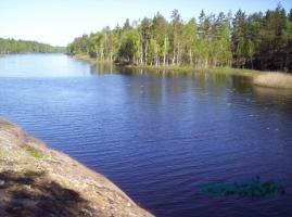 Foto 4 Urlaub mit Hund, Bungalow in Süd- Schweden privat