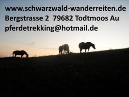 Urlaub im Sattel, Wanderreiten ab Todtmoos Au Südschwarzwald