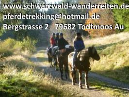 Foto 4 Urlaub im Sattel, Wanderreiten ab Todtmoos Au Südschwarzwald