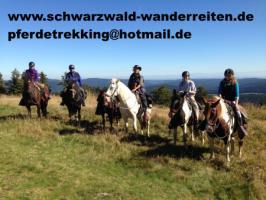 Foto 6 Urlaub im Sattel, Wanderreiten ab Todtmoos Au Südschwarzwald