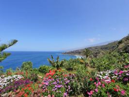 Foto 8 Urlaub auf Teneriffa Ferienhaus Romantica - Teneriffa Nord mit Meerblick und Pool