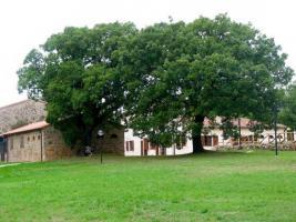 Urlaub in der Toskana fuer Workshops-Malkurse-Musikkurse-Familien-Seminargruppen