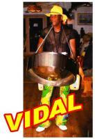VIDAL the Multi Music Man