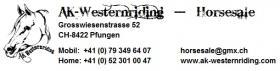 Foto 4 Verkaufe 'Carlo', Haflinger Wallach, geb. 1997
